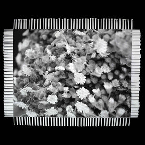 LITTLE FLOWERS - WOVEN PHOTOGRAPH