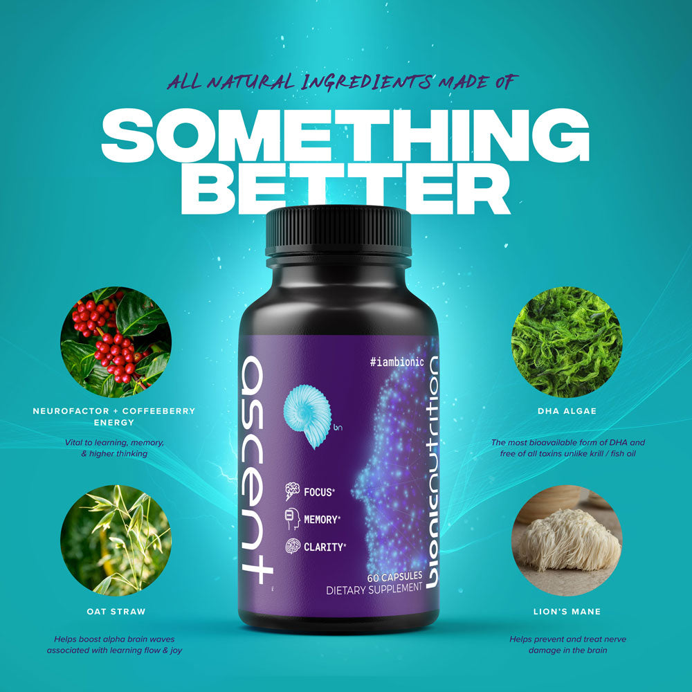 Study Links Dietary Supplement To Brain >> Are Ascent Cognitive Enhancers The Best Brain Supplements Bionic