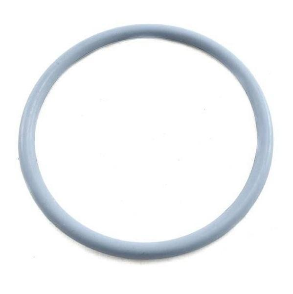 Astral O Ring Union CTX VX ZX 50mm-O Rings-Mr Pool Man