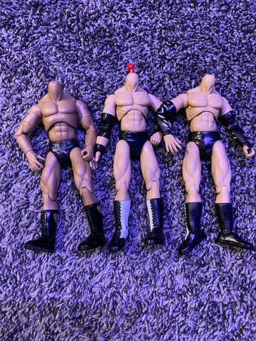 Final Count Jakks Matt Hardy Lot (without heads)