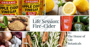 FREE: Fire Cider Class.  Immune Boosting Powerhouse