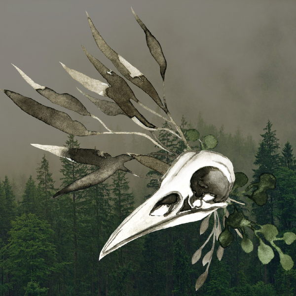BOS/Journal Stickers:  Corvid Skull & Herbs