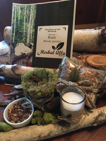 Herbal Ally Box:  Birch