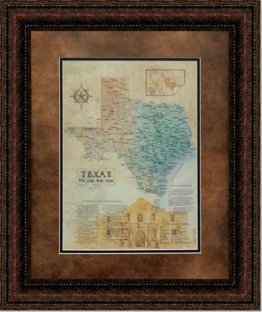 Alamo Map | Wall Art Print | 16X20, 24X30