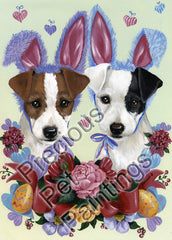 Jack Russell Bunnies-TR