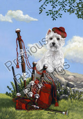 West Highland Terrier Piper-LF