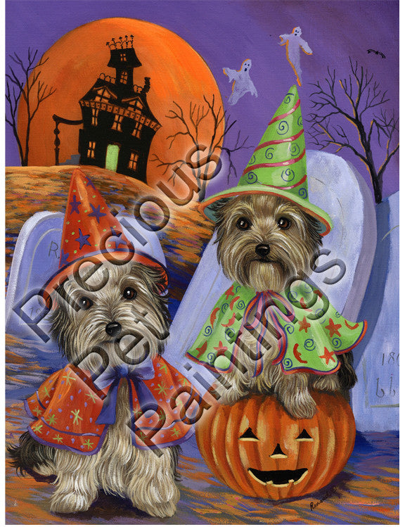 Yorkshire Terrier Haunted House GF