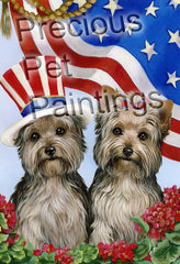 Yorkshire Terrier USA-LF