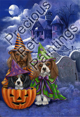 Cavalier King Charles Haunted House-LF