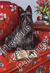 Scottish Terrier Lil Einstein-PZ