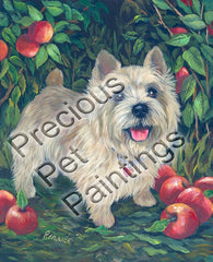 Norwich Terrier Apple Grove-NC