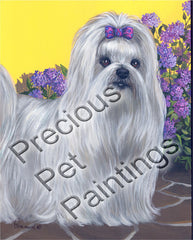 Maltese Terrier Patio Princess-LF