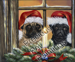 Pug Anticipation-PZ