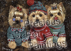 Yorkshire Terrier Elves-GF