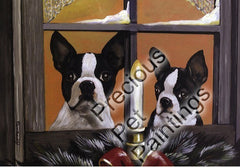 Boston Terrier Waiting for Santa-GC