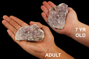 "Lepidolite Mica 2 1/2"" 4-7 Oz All Chakras - Kidz Rocks"