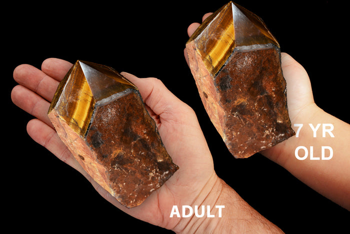 "Tigers Eye Polished Top 4"" 14-16 Oz Solar Plexus Chakra"