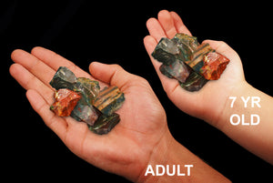 "Fancy Jasper 1"" Set of 6 Root Chakra - Kidz Rocks"