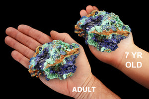 "Azurite Malachite 3"" 7-10 Oz ULTRA HIGH Quality Third Eye Chakra - Kidz Rocks"