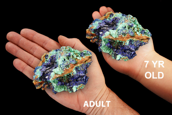 "Azurite Malachite 3"" 7-10 Oz ULTRA HIGH Quality Third Eye Chakra"