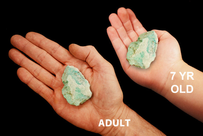 "Amazonite Crystal 1"" to 2"" 2-4 Oz All Chakras"