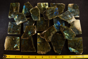 "Labradorite Slice 2"" Medium Grade Flash All Chakras - Kidz Rocks"