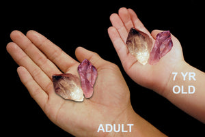 "Amethyst Crystal 1"" Set of 2 Third Eye Chakra - Kidz Rocks"