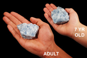 "Blue Calcite 2"" Throat Chakra - Kidz Rocks"