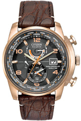 Citizen Watch Eco Drive World Time A.T