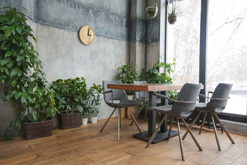 Eora design wall clock in a room with plants and a table (pure ash wood)