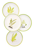 Botanical Fern Salad Plate Set