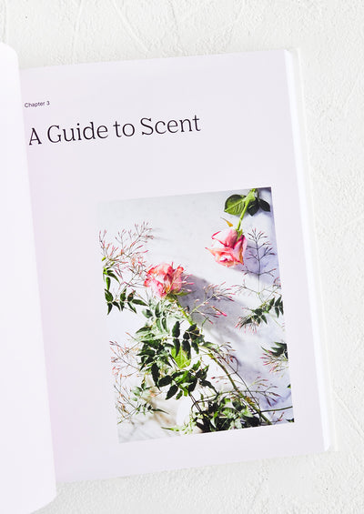 """A Scented Life"" Book hover"