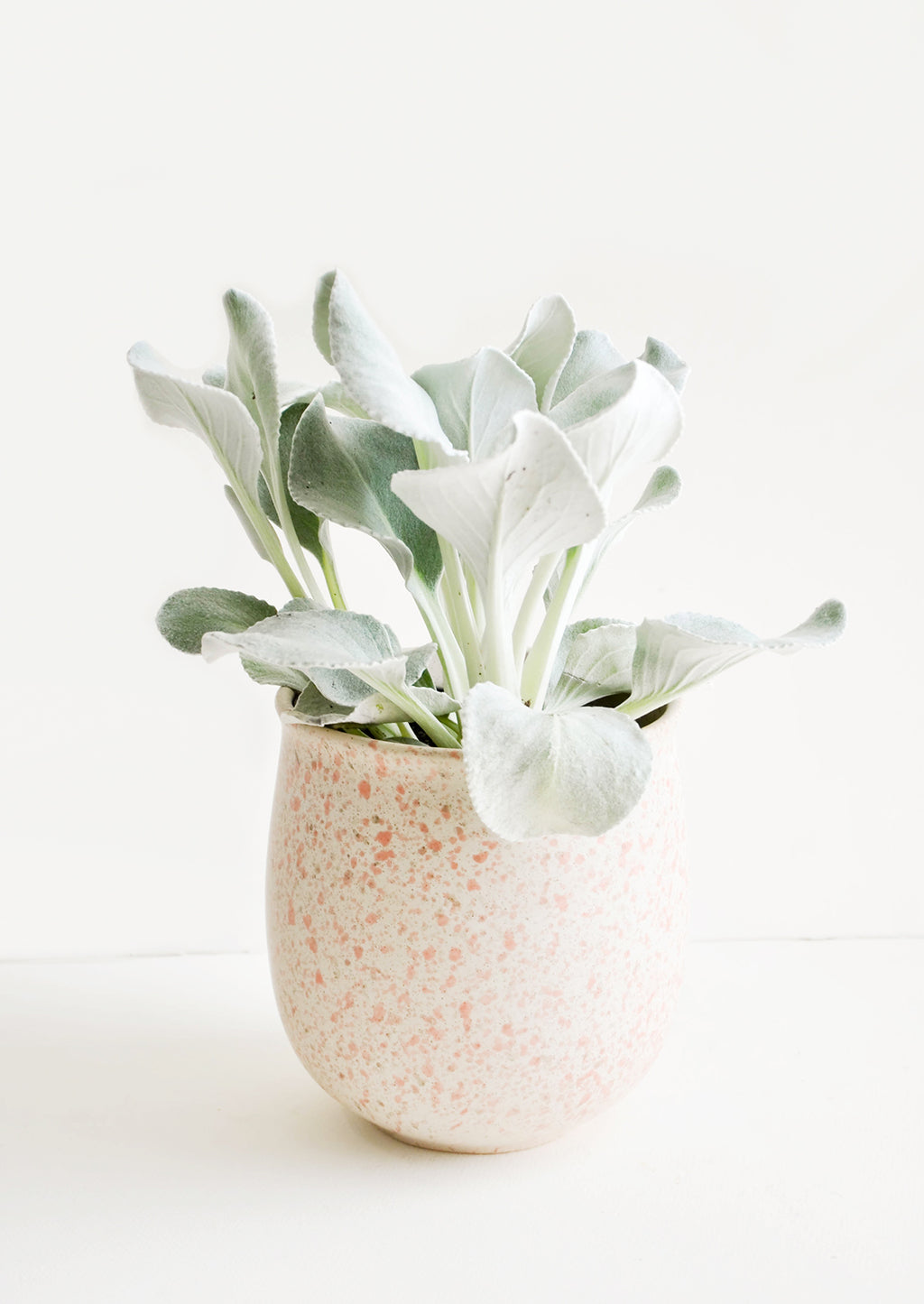1: Blush Splatters Planter in  - LEIF