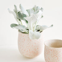 3: Blush Splatters Planter in  - LEIF