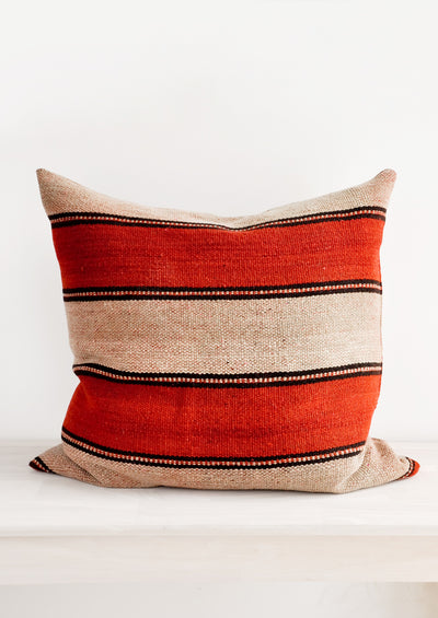 Frazada Pillow in Tecopa, 22""