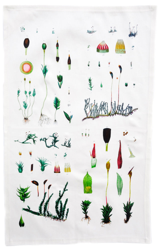 Botanical Moss Tea Towel - LEIF