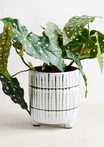 Choku Footed Planter