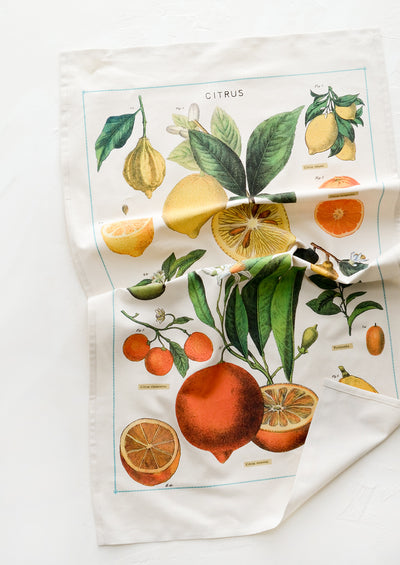 Citrus Species Tea Towel