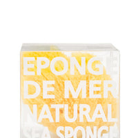 1: Natural Sea Sponge in  - LEIF