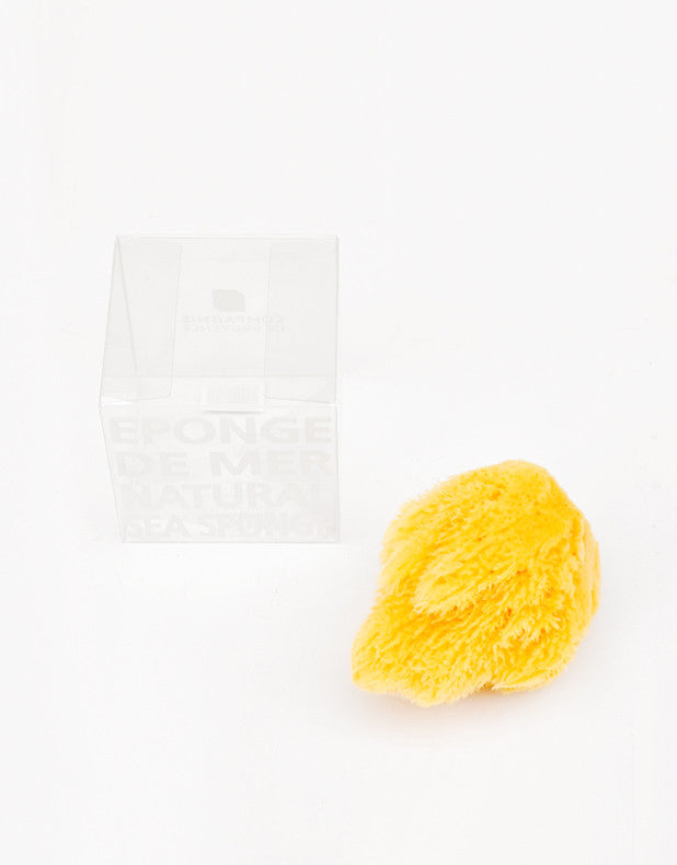 2: Natural Sea Sponge in  - LEIF