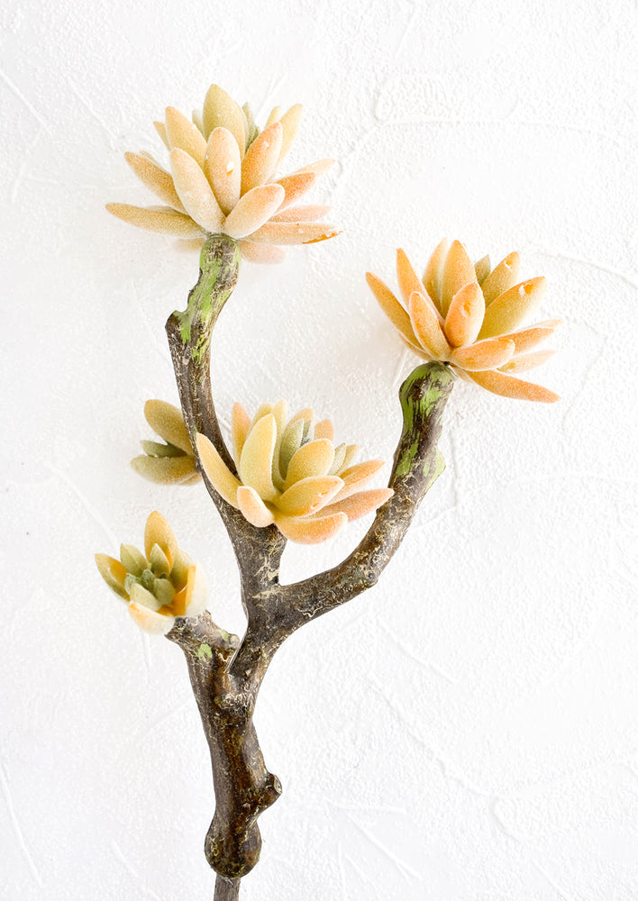 "1: Realistic looking faux succulent branch with pink-green ""blossoms"""