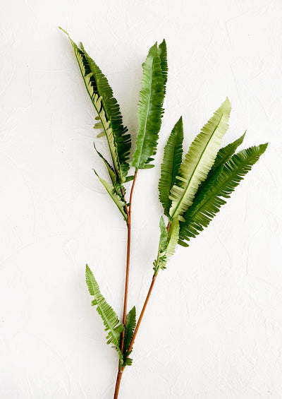 Faux leaf branch with two off-shoots of green, fern-like fronds