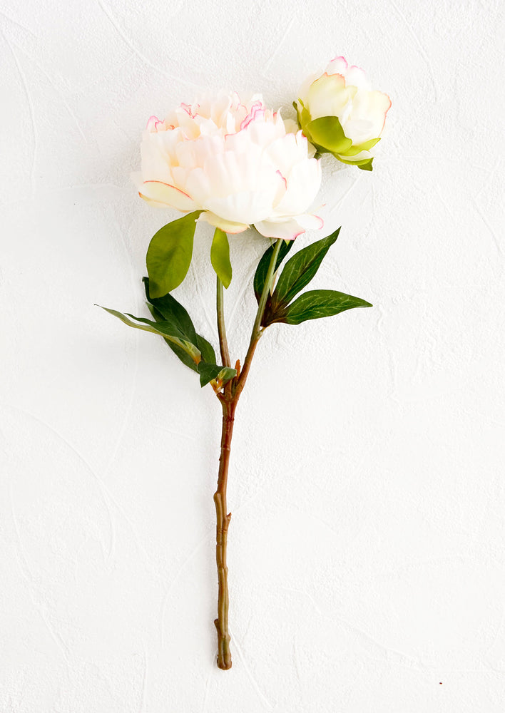 1: Realistic looking faux peony flower stem, large flower with smaller bud off shoot