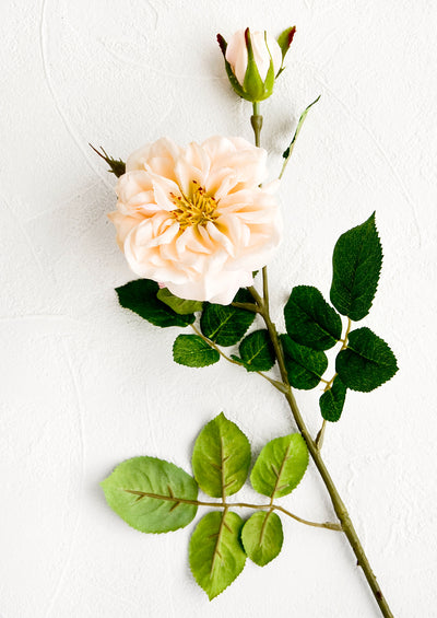 Faux Garden Rose Stem
