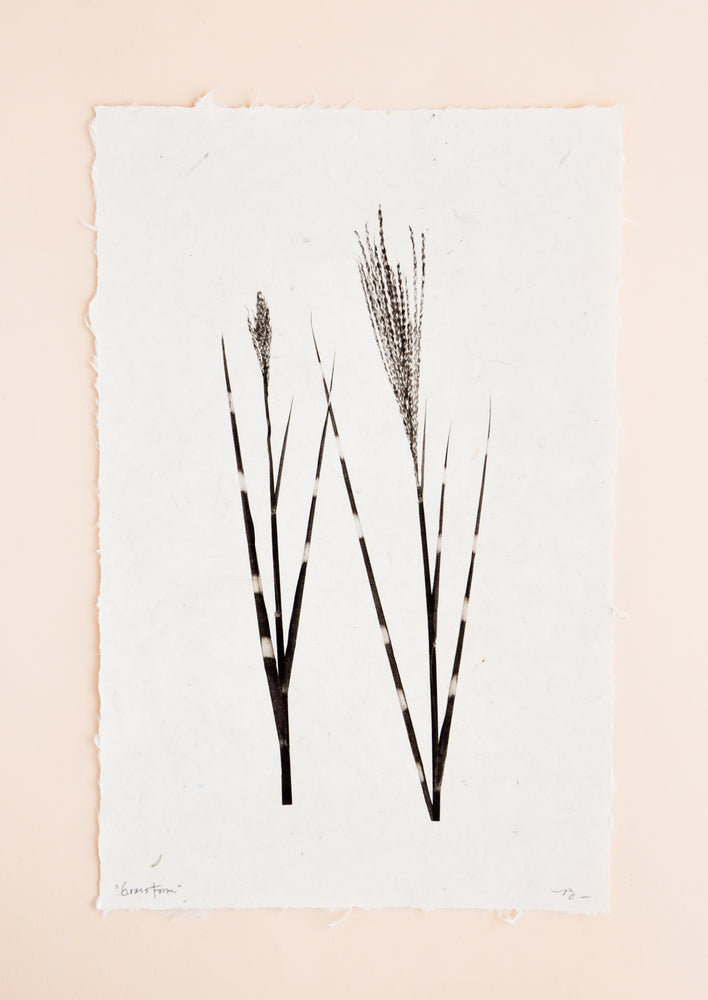 1: Grass Form Sepia Print in  - LEIF