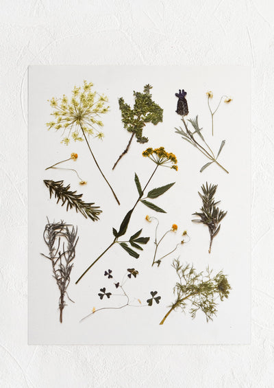A digitally printed art print of pressed wildflowers and herbs on white background.
