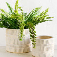 Small: Two bisque ceramic planters in small and large sizes, large size shown with fern plant.