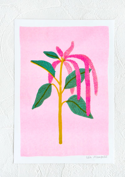 Risograph art print with neon coral background and amaranth stem