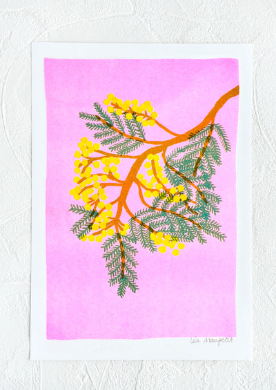 Risograph art print with neon coral background and mimosa branch