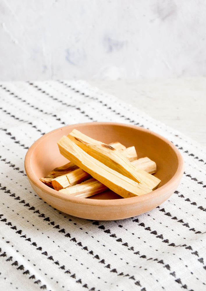 2: Shallow terracotta bowl holding sticks of palo santo incense